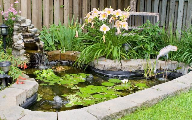 choisir un bassin de jardin
