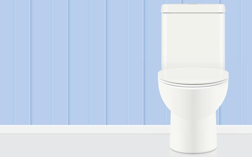 Installer un wc ooreka - Acide chlorhydrique toilettes ...