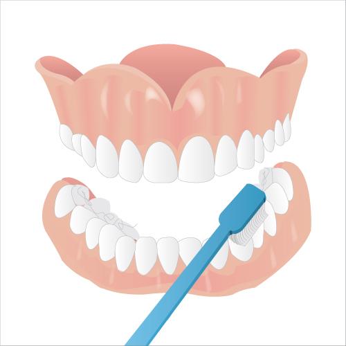 Nettoyer son dentier