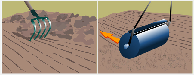 Comment planter de la pelouse gazon - Semer gazon sans rouleau ...