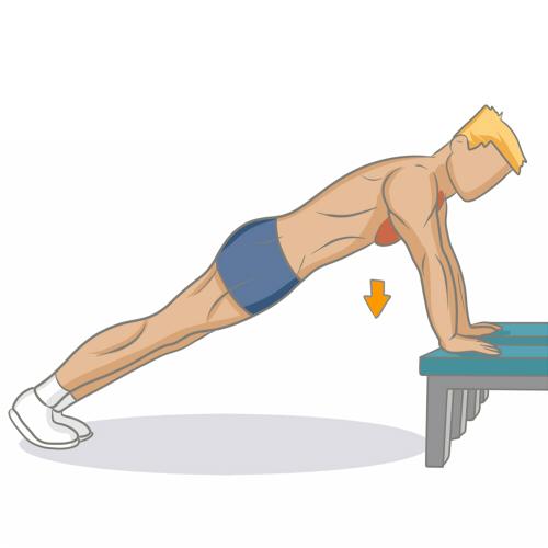 Bien Muscler Ses Pectoraux Musculation