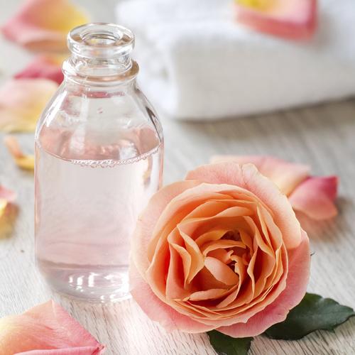 Faire de l'eau de rose maison