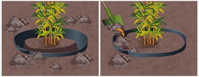 installer une barri re anti rhizomes jardinage. Black Bedroom Furniture Sets. Home Design Ideas