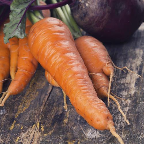 Confectionner des sirops de légumes médicinaux