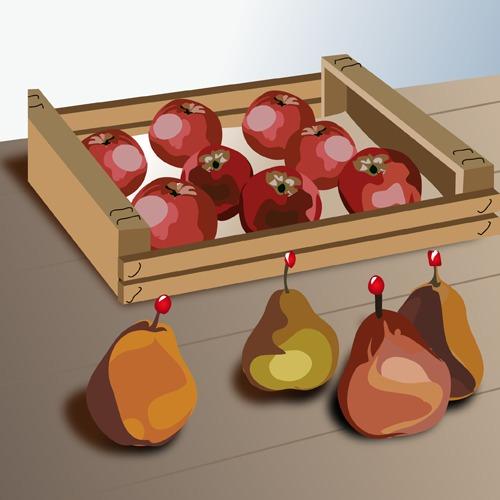 Conserver les pommes et les poires du verger tout l'hiver