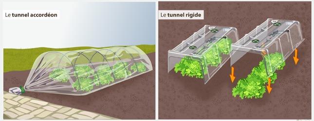 Forcer des l gumes au potager potager - Tunnel de protection pour potager ...