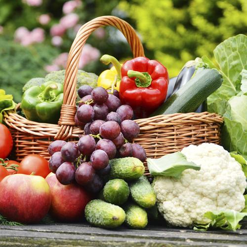 Forcer des légumes au potager