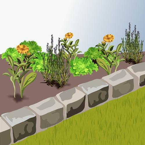 Poser une bordure en pavés - Aménagement de jardin
