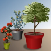 planter un arbuste ou un arbre en pot verger