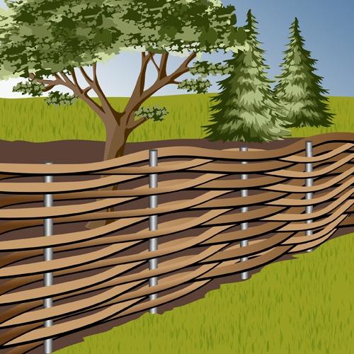 Réaliser une bordure en plessis - Aménagement de jardin