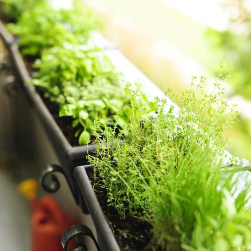 Fabriquer une jardinière avec une gouttière