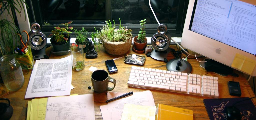 Quelles plantes pour le bureau liste ooreka - Plante pour le bureau ...