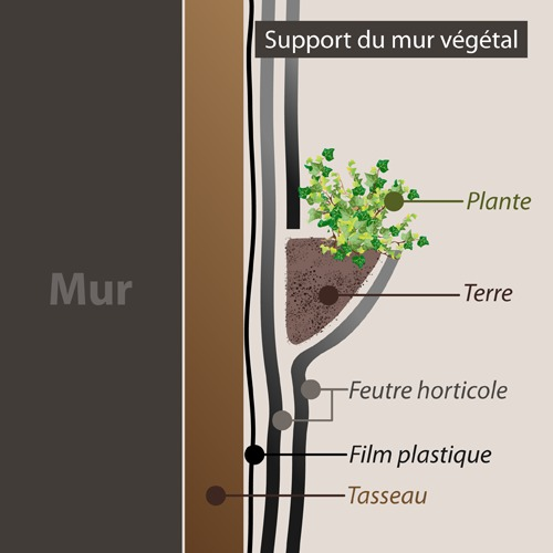 Comment faire un mur v g tal for Comment concevoir un plan de construction