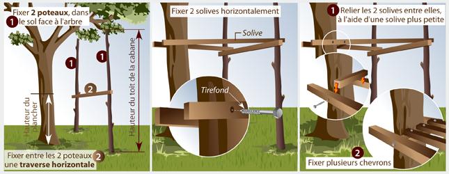 Comment Construire Une Cabane Dans Les Arbres Ooreka