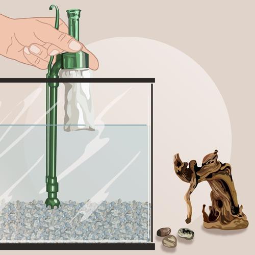 Changer l'eau d'un aquarium
