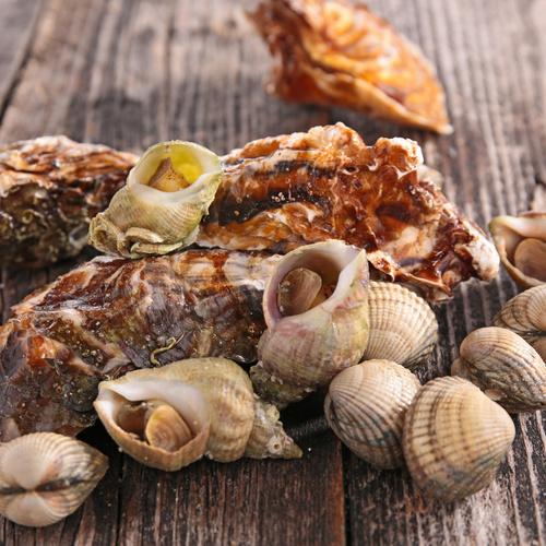 Comment conserver les fruits de mer