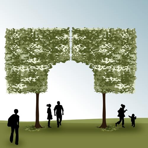 Taille en rideau et marquise des arbres