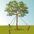 transplanter un arbre ooreka. Black Bedroom Furniture Sets. Home Design Ideas