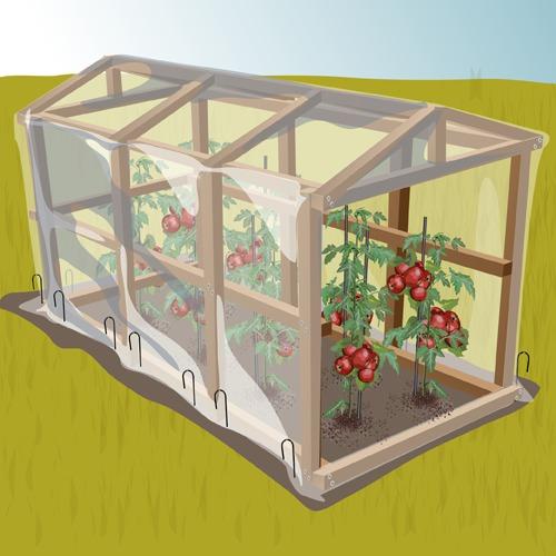 Fabriquer une serre à tomates