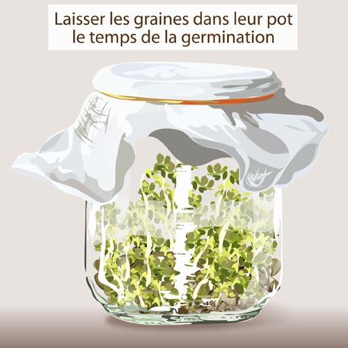 Fabriquer un germoir ooreka for Temps de germination gazon