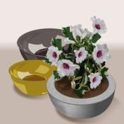Comment Fabriquer Des Pots De Fleur Ooreka