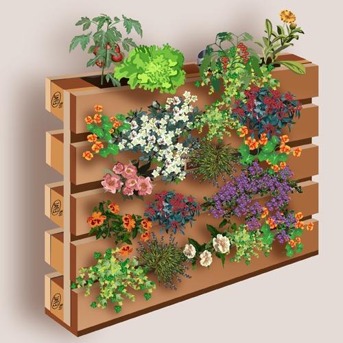 Creer Un Mur Vegetal En Palette Ooreka