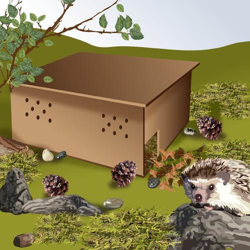 Construire une maison pour hérisson