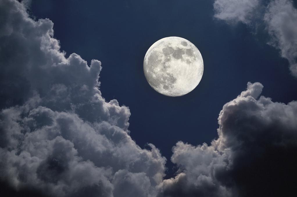 7 leçons pour jardiner avec la Lune