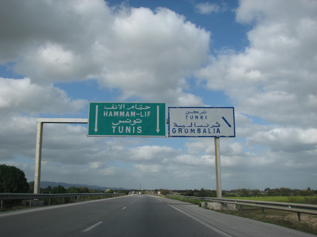 Permis de conduire tunisien