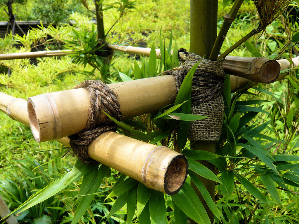 tuteur en bambou caract ristiques types de plantes prix ooreka. Black Bedroom Furniture Sets. Home Design Ideas