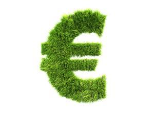 Logo euro ecolo vert herbe