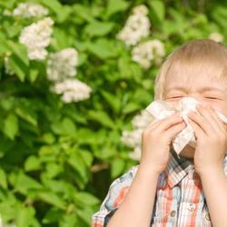 Allergie : l'allergie est une réaction anormale de l'organisme contre une substance étrangère.