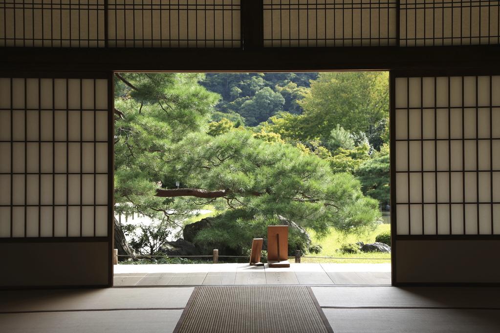 panneau japonais mod les caractr istiques et prix ooreka. Black Bedroom Furniture Sets. Home Design Ideas