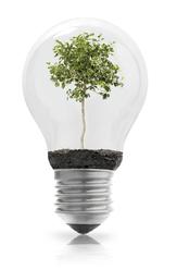 Recyclage ampoule