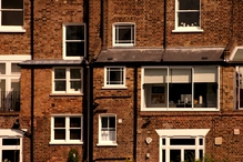 Désinsectisation appartement