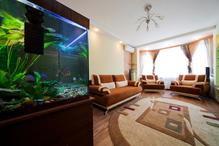 Osmoseur aquarium