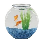 Eau aquarium ooreka for Aquarium bocal poisson