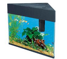 Forme aquarium