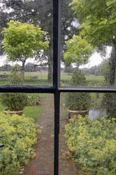 Jardin vu par fenetre pluie