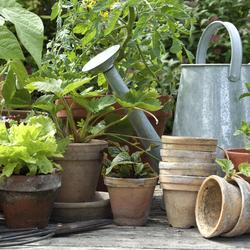 faire une jardini re jardinage. Black Bedroom Furniture Sets. Home Design Ideas