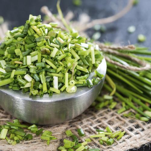 Conserver des fines herbes et des herbes aromatiques