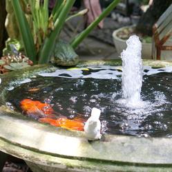 Cr er un bassin de jardin sur b che bassin de jardin for Fontaine bassin a poisson