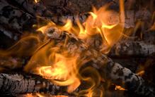 Le bois est un combustible idéal pour le barbecue