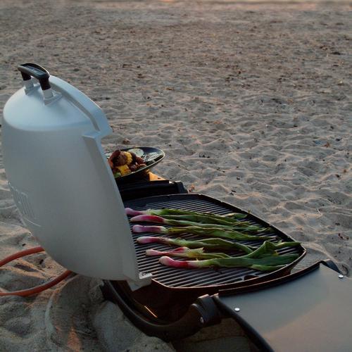 Ce barbecue portable permet vraiment de réaliser des grillades n'importe où, comme ici, sur une plage