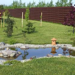 Cr Er Un Bassin De Jardin Sur B Che Bassin De Jardin