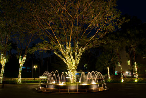 Fontaine lumineuse : nos conseils pour bien la choisir - Ooreka