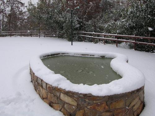 Protéger son bassin de jardin et sa fontaine en hiver - Ooreka