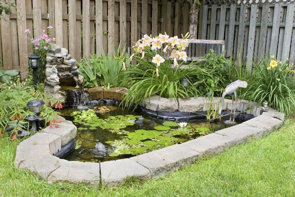 Stunning Bassin De Jardin Bache Pictures  Design Trends