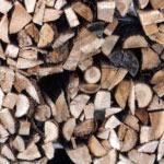 bois sous forme de bûches