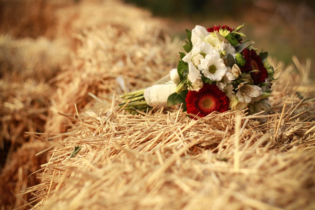 Populaires Mariage champêtre : caractéristiques d'un mariage champêtre GW45